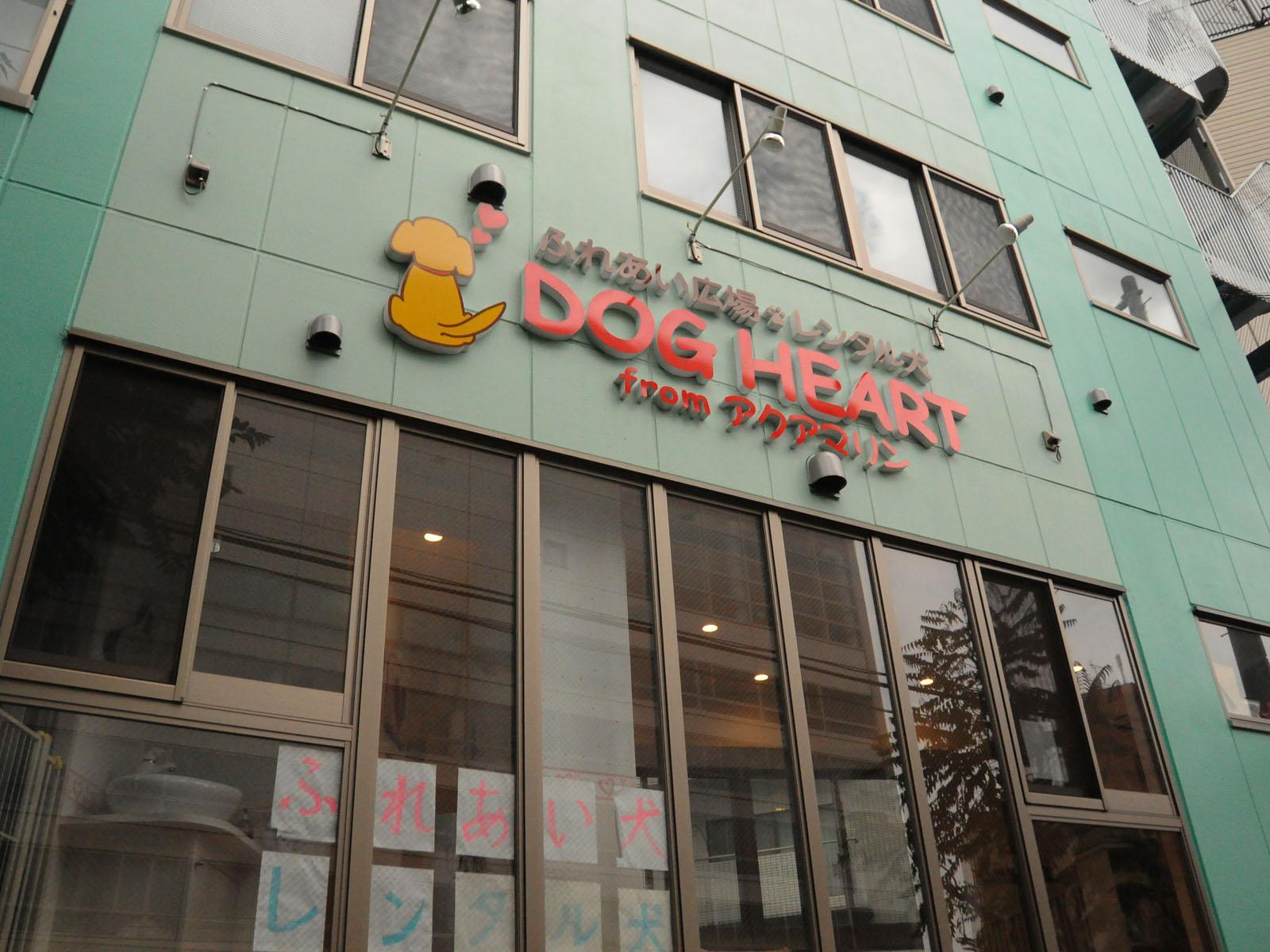 「【動物カフェ】今東京で行くならココ!オススメ5選!」の画像
